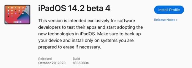 IPadOS 14 2 beta 4 0001 z