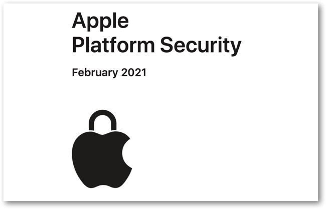 Platform Security Guide 2021