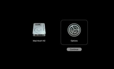 Silicon Mac Disk Utility 00005