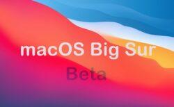 Apple、「macOS Big Sur 11.3 Developer beta 7 (20E5229a)」を開発者にリリース