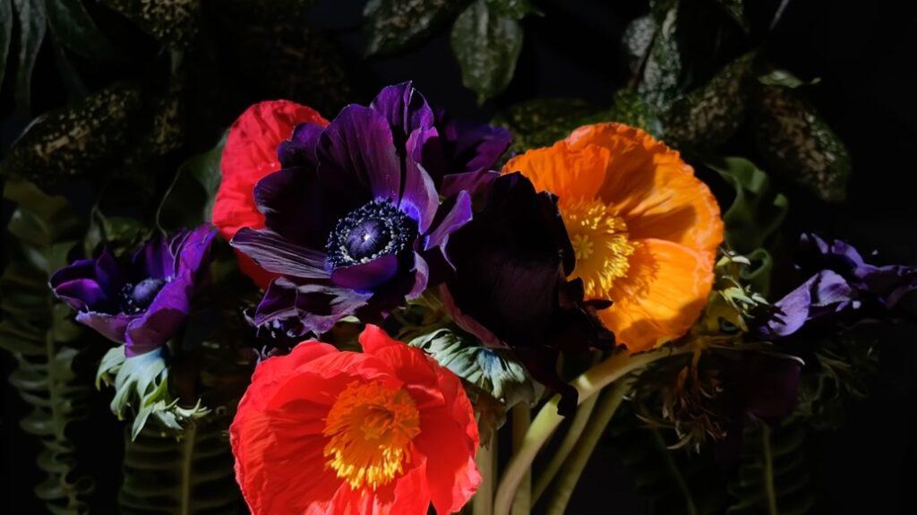 Apple、iPhone 12のShot on iPhoneシリーズ「Full Bloom」を公開