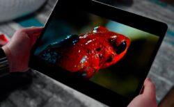 OLEDは2022年にiPadのTFT画面に取って代わる可能性がある
