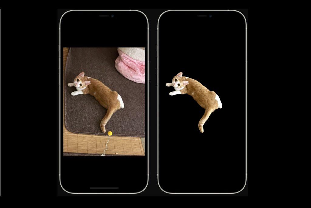 iPhoneおよびiPadの写真から背景を簡単に削除する方法