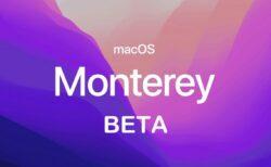 Apple、macOS Monterey 12 Developer beta 6 (21A5506j)」を開発者にリリース